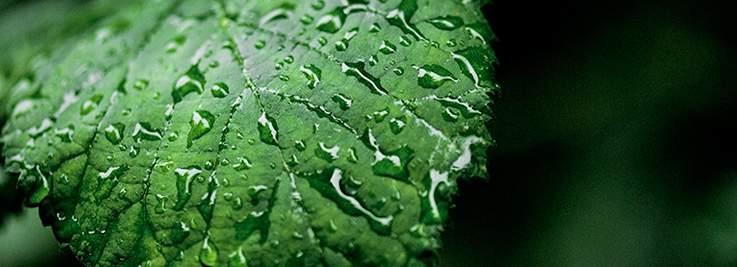 Læs mere om de miljømæssige fordele ved fjernkøling