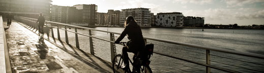 bikes_bridge_web